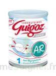 GUIGOZ EXPERT AR 1 Lait pdre B/800g à Cenon