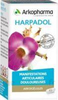 ARKOGELULES HARPAGOPHYTON, gélule à Cenon