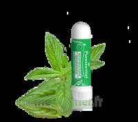 PURESSENTIEL RESPIRATOIRE Inhalation nasal 19 huiles essentielles à Cenon