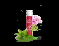 PURESSENTIEL ANTI-PIQUE Roller 11 huiles essentielles à Cenon