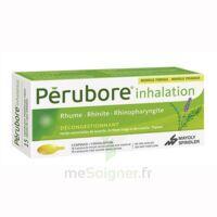 PERUBORE Caps inhalation par vapeur inhalation Plq/15 à Cenon
