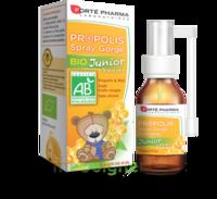 Forte Pharma Propolis bio Spray junior 15ml à Cenon